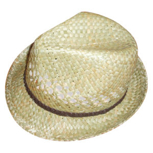 Panama Straw Hat pictures & photos