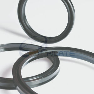 LBH Wiper Seal pictures & photos