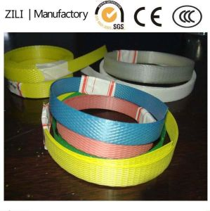 Colorful PP Strap for Packing Carton pictures & photos