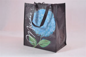 BSCI Audit Factory Tote Bag Meaning/Wheeled Tote Bag/Tote Bag (MECO455) pictures & photos