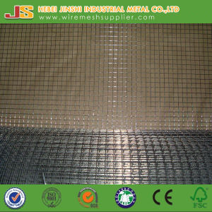 Welded Mesh Roll Made in China pictures & photos