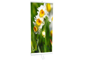 Display Stand Double Sides Banner Stand (DW-R-S-7 85CM) pictures & photos