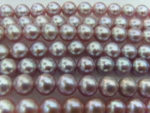 Purple Freshwater Pearls (SFP1001)