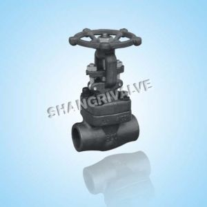 High Pressure Forged Gate Valve (Z11/Z61)