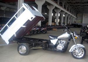 Tricycle (TY150-C1)