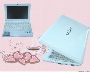 Laptop (W300)