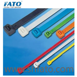 Self-Locking Nylon Cable Ties (FT)
