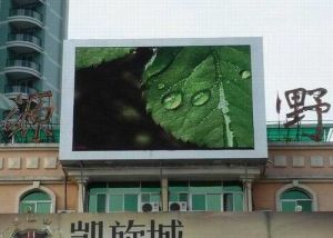 LED Display Outdoor Full Color (P12mm DIP)