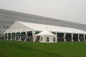 Wedding Tent 30x60m (TGEO2010)