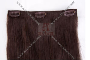 Clip on Hair Extension (AV-HE021) pictures & photos