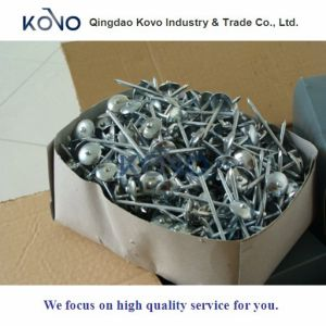 Umbrella Head Roofing Nails Smooth Shank pictures & photos