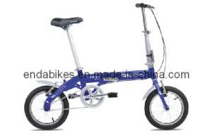 Folding Bicycle/Bike (BA412)