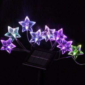 Solar Star String Christmas Light pictures & photos