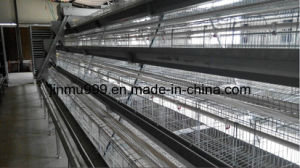 Jinfeng Automated Chicken Farm Cage pictures & photos