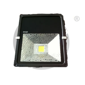 Project Light, LED Flood Light, Outdoor Light Lamp pictures & photos