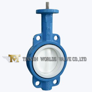 PTFE/PFA All Lining Bare Shaft Wafer Butterfly Valve pictures & photos