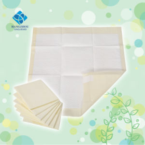 High Quality Super Absorbency Puppy Training Pad with The Size 60*60cm pictures & photos