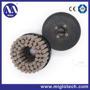 Customized Industrial Brush Disc Brush for Deburring Polishing (dB-200035) pictures & photos