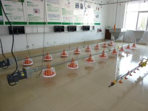 Automatic Broiler/Breeder/Layer/Chick Chicken House Spray Disinfection System pictures & photos