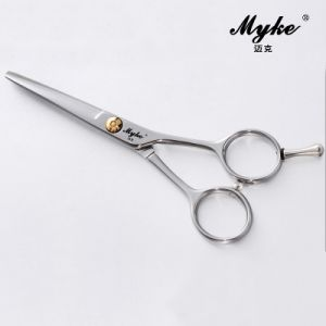 Best Hairdressing Cutting Scissors (DF-50)