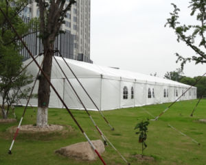 Outdoor Rooftop Carport Exhibition Tent Event Party Tent for Auto Show pictures & photos