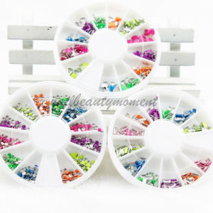 Fluorescent Colorful Nail Art Rivets Nail Art Accessories Metal Studs pictures & photos