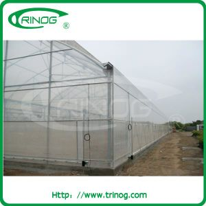 Plastic Film Nursery Greenhouse for agriculture pictures & photos