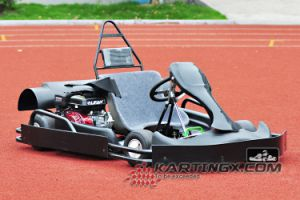2016 America Playground Use Single Seat High Speed 200cc Gas Fuel Karting pictures & photos