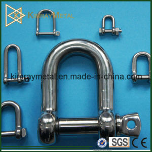 Stainless Steel Dee Type Shackle pictures & photos