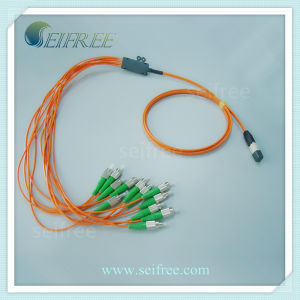 MPO-FC 12 Cores Fiber Optic Patch Cord Cable pictures & photos