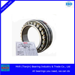 Stock Specialize in Nnu4148 Big Cylindrical Roller Bearing