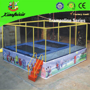 Two Bed Trampoline with Ladder pictures & photos