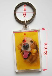 2015 Yellow Promotional 3D Keychain Acrylic pictures & photos