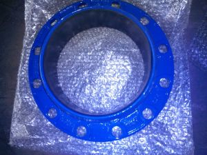 Carbon Steel Flange pictures & photos