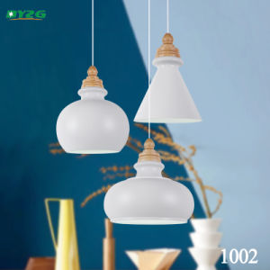 Antique Decorative Home Lighting Chandelier Light/Pendant Lighting Byzg1002
