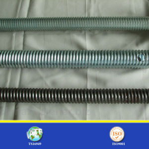 DIN975 Ground Screw with Nut pictures & photos