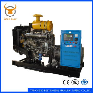 24kw-80kw Ricardo Standby Power Generator for Industrial Use