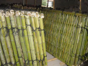 Wholesale Wood Plastic Garden Fence Bamboo pictures & photos