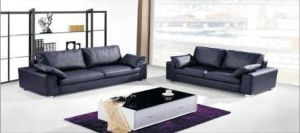 Modern Leisure Furniture The Best Leather Sofa pictures & photos