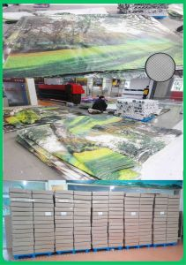 Tongjie Printing PVC Banner for Advertising (TJ-S003) pictures & photos