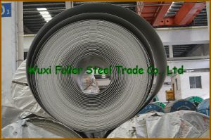 Metal Coil 316L Hot Rolled Stainless Steel Coil pictures & photos