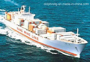 (Logistics) Freight Forwarder: LCL Ocean Shipping From China to Cyprus