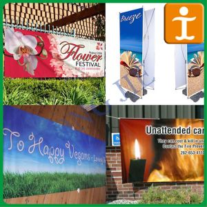 China Full Color Prined Promotional Vinyl/PVC Banner (TJ-21) pictures & photos