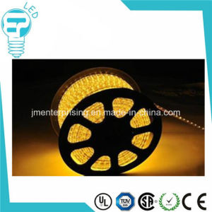 5050 Waterproof RGB LED Strip IP68 RGB LED Strip pictures & photos
