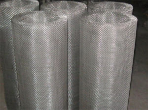 304stainless Steel Wire Mesh with Lower Price pictures & photos
