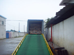 Mobile Yard Ramp pictures & photos