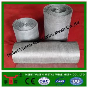 China Manufacturer Hot Sales Gas Liquid Filter Mesh pictures & photos