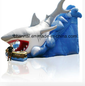 2016 Top Sale Inflatable Shark Water Slide pictures & photos
