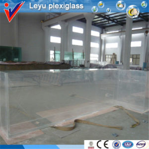 Chinese Clear Large Marine Acrylic Aquarium pictures & photos