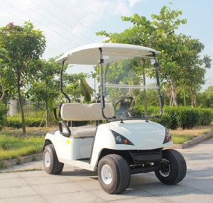 China Marshell Manufacturer Electric Golf White Buggy (DG-C2) pictures & photos